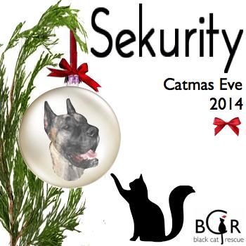 Sekurity #CatmasEve 2014