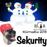 #CatmasEve 2015 Sekurity.Brutus