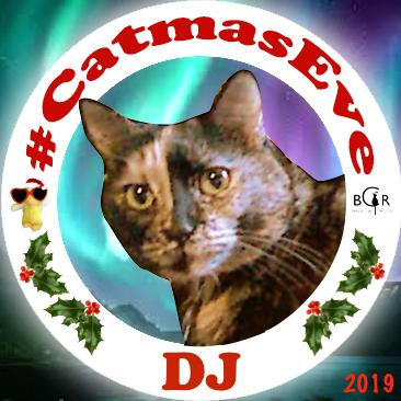 2019 DJ @cinnimini2