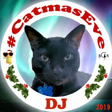 2019 DJ @kittehboi