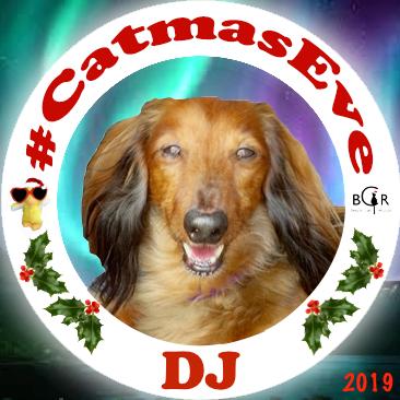2019 DJ @skye613