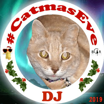 2019 DJ @TheNascarKitty