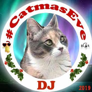 2019 DJ @tinypearlcat