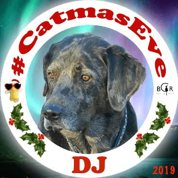 2019 DJ @RealFakeGator