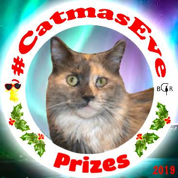2019 Prizes @MaggieTKat