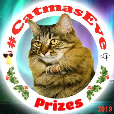 2019 Prizes @pumpkinpuddy
