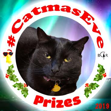 2019 Prizes @sisfurcats Ragamuffin
