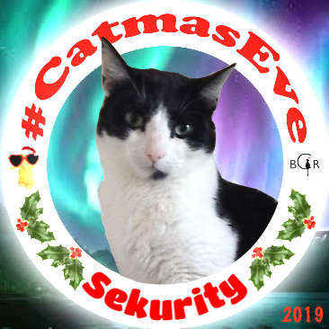 2019 Sekurity @Mikey_W_Cat