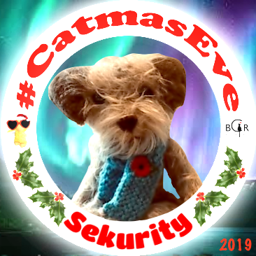 2019 Sekurity @claptonterrier