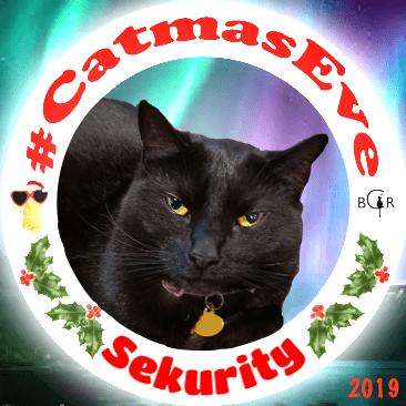 2019 Sekurity @sisfurcats Ragamuffin