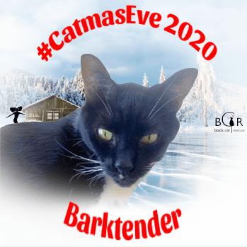 Barktender @Slinky_The_Cat