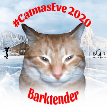 Barktender @Spike_cat