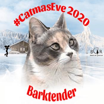 Barktender @tinypearlcat
