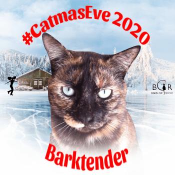 Barktender @moothemousecat