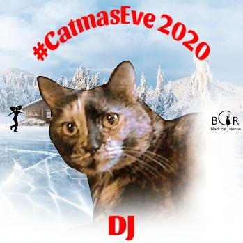 DJ @CinniMini2