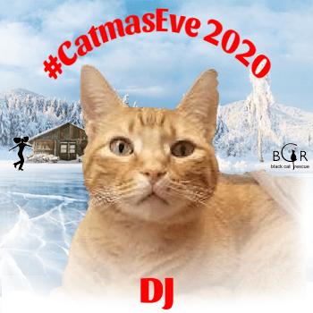 DJ @IamRustyCat