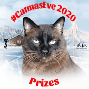Prizes @TweetingTruman